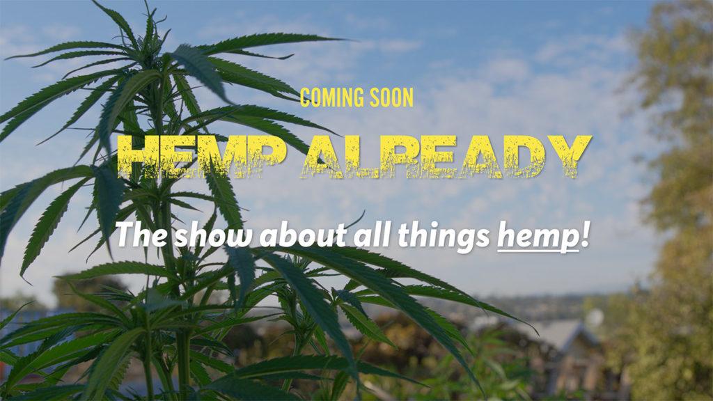 hemp plant as seen in the video series Hemp Already